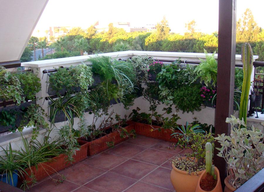 techos-verdes-azoteas-verdes-lima-ext