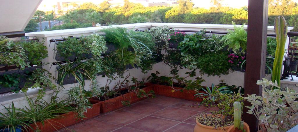 techos-verdes-azoteas-verdes-lima