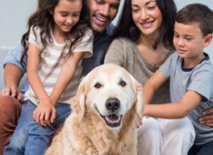 comprar-departamento-pet-friendly-lima